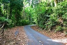 Hutan Simpan Tanjung Tuan Ni Pun Gambar Masa P