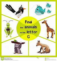 Learning Maze Find All 3 Animals