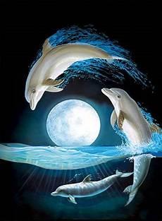 malvorlagen unterwasser tiere um pin joey tanhueco auf dolphins in 2020 wassertiere
