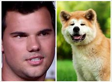 14 Celebrities Who Look Like Westminster Kennel Club Dogs