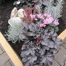 grab bepflanzen ideen bildergebnis f 252 r grabbepflanzung im herbst