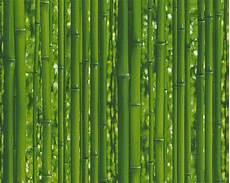 bambus tapete as dekora natur 95936 1 tapete bambus papiertapete