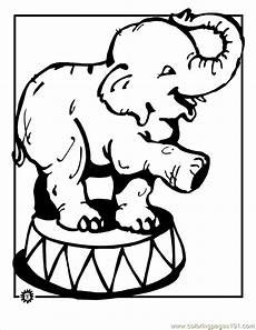 circus elephant coloring coloring page free elephant
