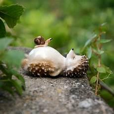 Aliexpress Buy Sleeping Hedgehog Miniatures Lovely