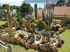 giardini piante grasse per esterno giardini piante grasse per esterno ac95 pineglen