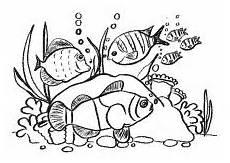 Malvorlagen Unterwasser Tiere Malen Die 8 Besten Bilder Malvorlagen Unterwasserwelt