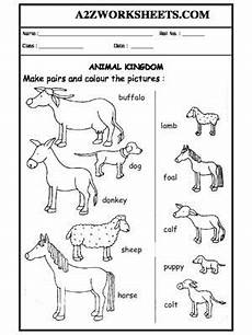 domestic animal worksheets 14291 worksheet 06 animals and their babies science worksheets baby animals animal worksheets