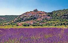 la provence frankreich provence springing into the south of telegraph