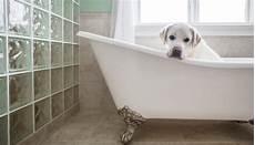 entspannen in der badewanne freistehende badewanne