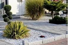 steingarten gräser winterhart steinbeet mit gr 228 sern gestalten 187 eine auswahl der sch 246 nsten