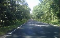 Keindahan Pemandangan Alam Jalan Hutan Taman Nasional Baluran