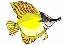 Ausmalbilder Bunte Fische Malvorlagen Meerestiere Kostenlos Malvor