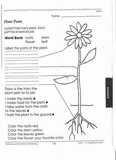 parts of the plants worksheets for grade 1 13716 13 best images of plant parts worksheet 2nd grade printable plant parts of a flower worksheet