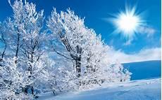 Winter Winter Background winter backgrounds free for desktop pixelstalk net
