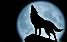 Wolf Wallpaper Moon
