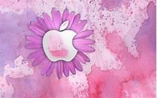 Girly Wallpaper For Laptop