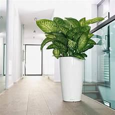 lechuza planter rondo premium 40 bloomling uk