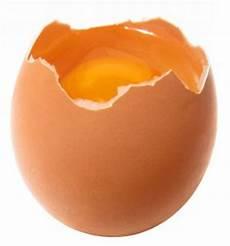 wieviel kalorien hat ein ei