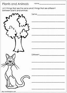 plants and animals worksheets for kindergarten 13507 our 5 favorite prek math worksheets science worksheets animal habitats and third grade