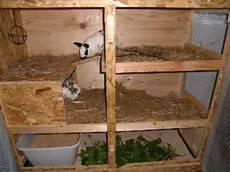 kaninchen stall f 252 r innen selbst gebaut