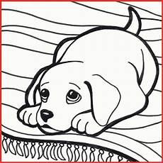 Ausmalbilder Hunde Welpen Ausmalbilder Welpen Kostenlos Hunde Welpen Malvorlagen