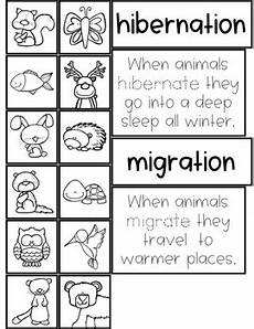 animals in winter worksheets for kindergarten 14199 animals in winter theme activities for preschool pre k and kindergarten