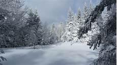 Photo Gratuite Neige Paysage Blanc Hiver Image
