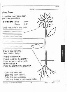 free plant worksheets 2nd grade 13733 2nd grade worksheet category page 1 worksheeto