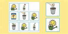 plant sequencing cards plant sequencing cards sequence