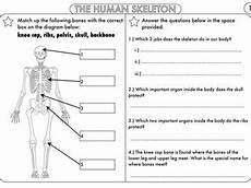year 8 science worksheets uk 12434 year 3 and 4 science worksheets with complimentary posters teaching resources