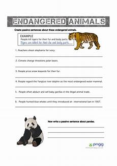 endangered animal worksheets 14298 endangered animals the passive voice teaching resources