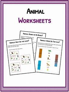 animals around us worksheet for grade 3 14405 butterfly facts information worksheets for teaching resource