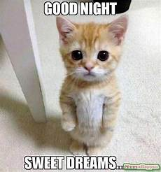 good meme funny goodnight memes for him and