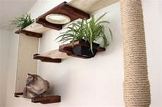 catwalk selber bauen 30 ideen f 252 r eine katzen kletterwand und coole kletterlandschaften