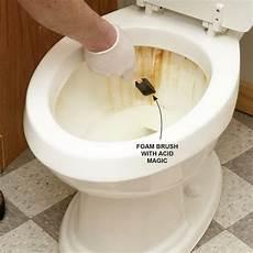 tipps und tricks zur reinigung des badezimmers putz