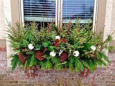 blumenkästen dekorieren winter balkonkasten im winter bepflanzen weihnachtsdeko f 252 r