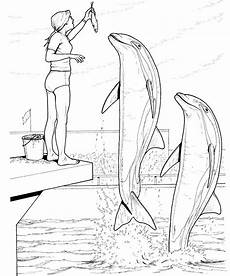 Ausmalbild Delphin Malvorlagen Fur Kinder Ausmalbilder Delfin Kostenlos