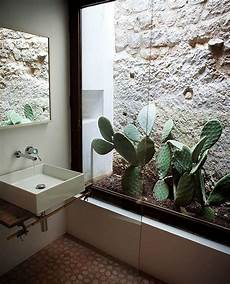 Garden Bathroom Ideas 17 Indoor Cactus Gardens Home Design And Interior