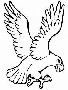 Malvorlagen Kinder Adler Pin I T Auf Coloring Animals 3 Tiere Malen Vogel