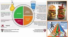 linee guida alimentazione alimentazione corretta linee guida bodybuilding