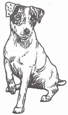 malvorlage hund russel malvorlage hund russel batavusprorace