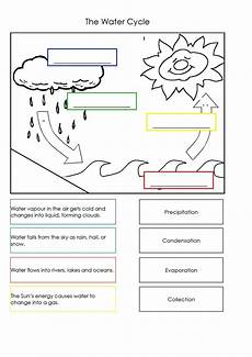 water cycle worksheet australian curriculum lessons