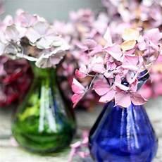 wie trocknet hortensien hortensien trocknen tipps und methoden brigitte de