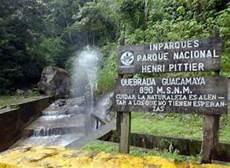 cuales son los simbolos naturales del estado carabobo parque nacional henri pittier temporadista com