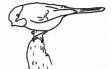 dibujos de el turpial turpial para colorear imagui