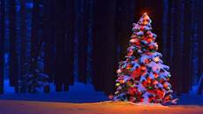 5x7ft Tree Snow Lights Flags by Tree Lights Bokeh Forest Trees Snow Winter Color
