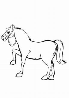 Pferde Ausmalbilder Klein Ausmalbilder Kleines Pony Pferde Malvorlagen