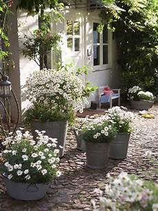 White Cottage Gardens white cottage on white gardens cottages and