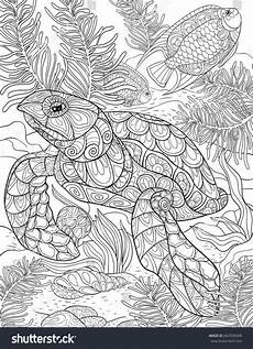 coloring page book a turtle line style