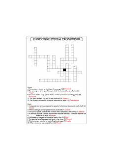 endocrine system animal hormones worksheets by beckystoke teaching resources tes